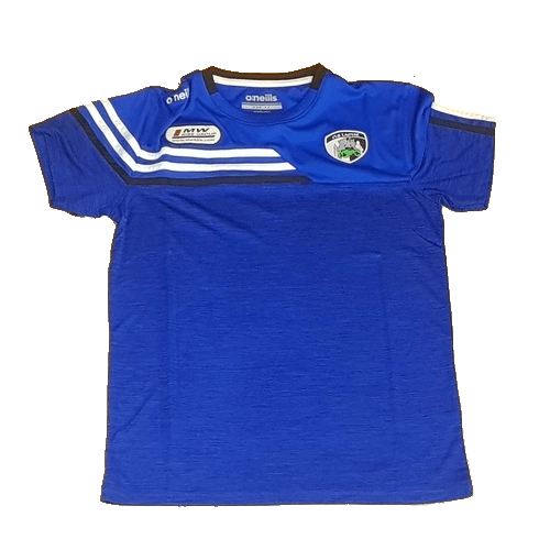 O Neill's Nevis 3S T-Shirt - Laois 19/20