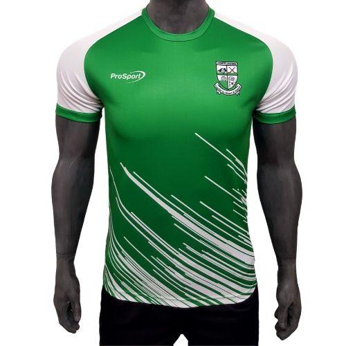 Prosport Portlaoise Gaa Training Jersey - Green/White