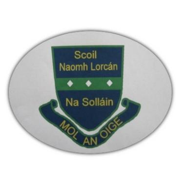 Sallins National School Naas